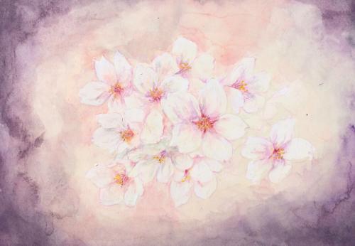 桜ロ+(1)_convert_20140417110409