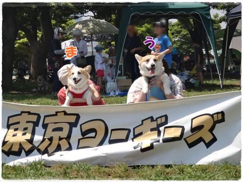 20140606-60.jpg