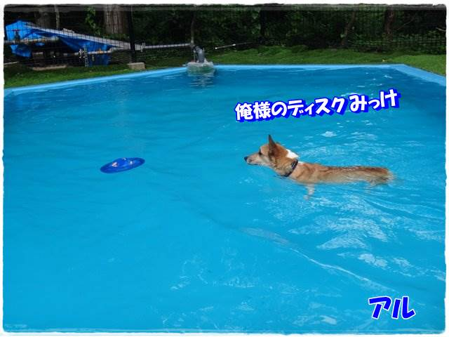 20140819-3.jpg