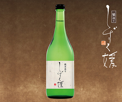 shizukuhime-1.jpg