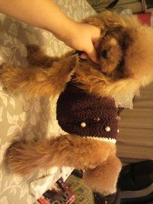愛犬鈴ちゃんのライフスタイルブログ-2010092723520002.jpg
