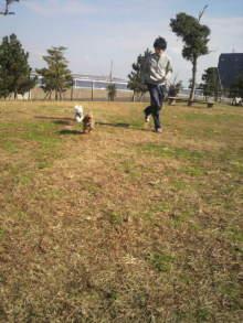 愛犬鈴ちゃんのライフスタイルブログ-2010112711520001.jpg