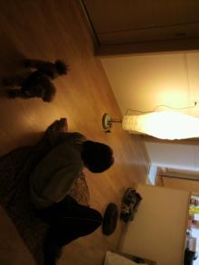 愛犬鈴ちゃんのライフスタイルブログ-2011020122460000.jpg