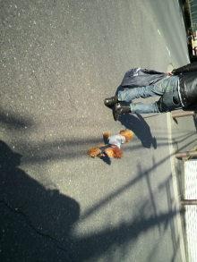 愛犬鈴ちゃんのライフスタイルブログ-2011030514240000.jpg