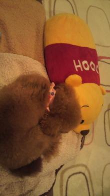 愛犬鈴ちゃんのライフスタイルブログ-2011032421010000.jpg