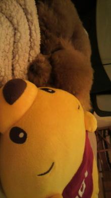愛犬鈴ちゃんのライフスタイルブログ-2011032421020001.jpg