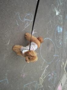 愛犬鈴ちゃんのライフスタイルブログ-2011050313260000.jpg
