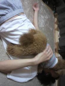 愛犬鈴ちゃんのライフスタイルブログ-2011050520190004.jpg