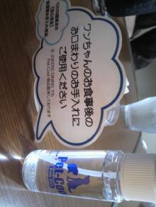愛犬トイプーの鈴ちゃん☆ライフスタイル-2011050814330001.jpg