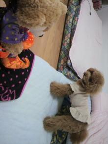 愛犬鈴ちゃん~トイプードル☆ライフスタイル~-2011053115290001.jpg