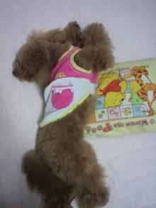 愛犬鈴ちゃん~トイプードル☆ライフスタイル~-2011060723550001.jpg
