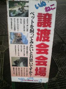 愛犬鈴ちゃん~トイプードル☆ライフスタイル~-2011061910480000.jpg