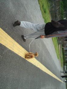 愛犬鈴ちゃん~トイプードル☆ライフスタイル~-2011061910520004.jpg