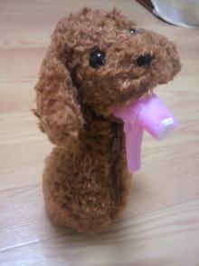 愛犬鈴ちゃん~トイプードル☆ライフスタイル~-2011062122120000.jpg