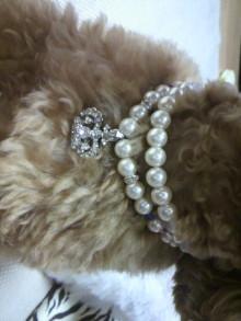 愛犬鈴ちゃん~トイプードル☆ライフスタイル~-2011072821100000.jpg