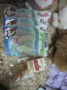 愛犬鈴ちゃん~トイプードル☆ライフスタイル~-2011081618380001.jpg