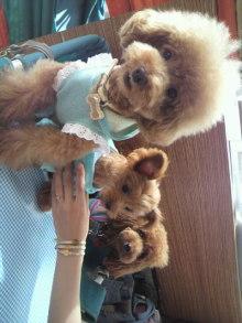愛犬鈴ちゃん~トイプードル☆ライフスタイル~-2011083015000000.jpg