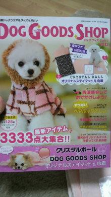 愛犬鈴ちゃん~トイプードル☆ライフスタイル~-2011111418080000.jpg