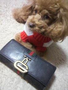 愛犬鈴ちゃん~トイプードル☆ライフスタイル~-2011120219480000.jpg