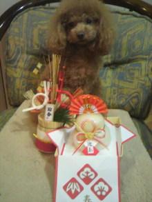 愛犬鈴ちゃん~トイプードル☆ライフスタイル~-2011123016210002.jpg