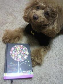 愛犬鈴ちゃん~トイプードル☆ライフスタイル~-2012011201140000.jpg
