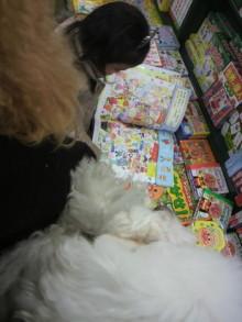 愛犬鈴ちゃん~トイプードル☆ライフスタイル~-2012011512090000.jpg