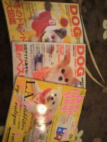 愛犬鈴ちゃん~トイプードル☆ライフスタイル~-2012021418270000.jpg