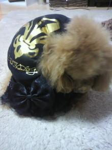 愛犬鈴ちゃん~トイプードル☆ライフスタイル~-2012030417410001.jpg