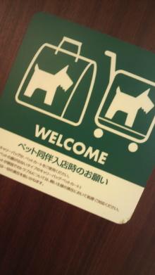 愛犬鈴ちゃん~トイプードル☆ライフスタイル~-2012032212390000.jpg