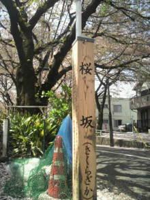 愛犬鈴ちゃん~トイプードル☆ライフスタイル~-2012041510190000.jpg