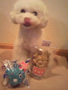 愛犬鈴ちゃん~トイプードル☆ライフスタイル~-2012042319250000.jpg