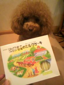 愛犬鈴ちゃん~トイプードル☆ライフスタイル~-2012042319340000.jpg