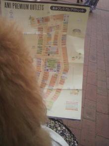 愛犬鈴ちゃん~トイプードル☆ライフスタイル~-2012042914320001.jpg
