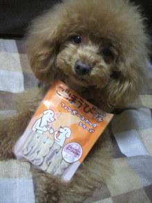 愛犬鈴ちゃん~トイプードル☆ライフスタイル~-2012042817300001.jpg