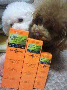 愛犬鈴ちゃん~トイプードル☆ライフスタイル~-2012050522320000.jpg
