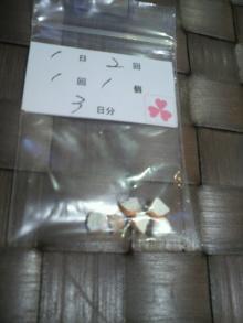 愛犬鈴ちゃん~トイプードル☆ライフスタイル~-2012051818380000.jpg
