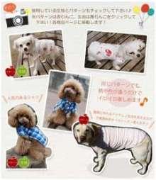 愛犬鈴ちゃん~トイプードル☆ライフスタイル~-i.jpg