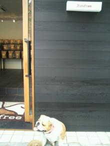 愛犬鈴ちゃん~トイプードル☆ライフスタイル~-2012052012590000.jpg