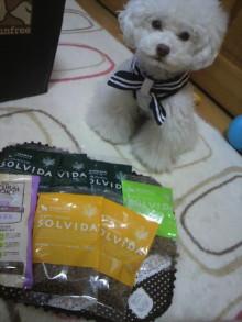 愛犬鈴ちゃん~トイプードル☆ライフスタイル~-2012052017360000.jpg