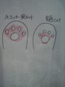 愛犬鈴ちゃん~トイプードル☆ライフスタイル~-2012052320280000.jpg