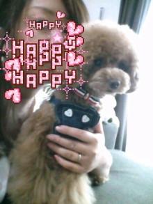 愛犬鈴ちゃん~トイプードル☆ライフスタイル~-2012053010320001.jpg