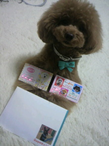 愛犬鈴ちゃん~トイプードル☆ライフスタイル~-2012061610440000.jpg