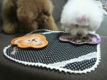 愛犬鈴ちゃん~トイプードル☆ライフスタイル~-2012062414100002.jpg