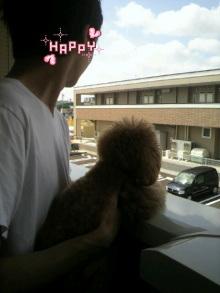 愛犬鈴ちゃん~トイプードル☆ライフスタイル~-2012063009190002.jpg