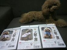 愛犬鈴ちゃん~トイプードル☆ライフスタイル~-2012071318180000.jpg