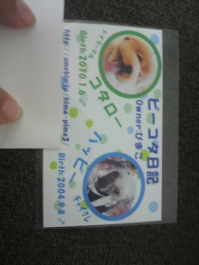 愛犬鈴ちゃん~トイプードル☆ライフスタイル~-2012072010450000.jpg