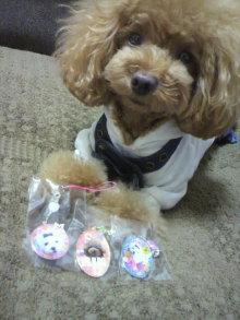 愛犬鈴ちゃん~トイプードル☆ライフスタイル~-2012072010480001.jpg