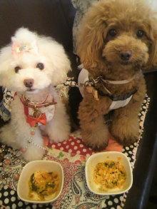 愛犬鈴ちゃん~トイプードル☆ライフスタイル~-2012072612080000.jpg