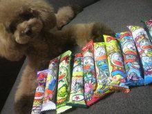 愛犬鈴ちゃん~トイプードル☆ライフスタイル~-2012072621390001.jpg