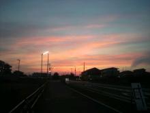 愛犬鈴ちゃん~トイプードル☆ライフスタイル~-2012072719020000.jpg